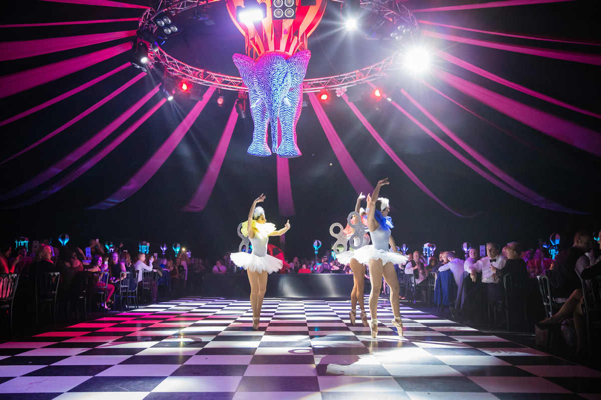 dream_circus_4.jpg